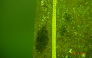 Measurement of a crack on a bridge pylon underwater